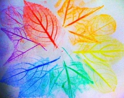 Create a color wheel with leaf rubbings.