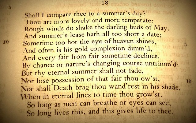 An analysis of the feelings of love and lust in sonnet 128 by shakespeare