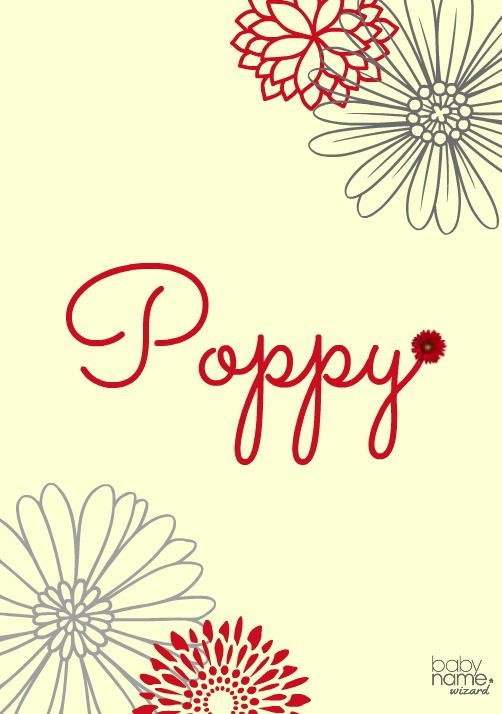 Poppy: Meaning, origin, & popularity of the name. The vivid color of poppy blooms, their tasty seeds, & their medicinal properties are just some of the reasons we love these flowers. They are also a symbol of remembrance for soldiers who have died during wartime. As a name, Poppy can be given in reference to the flower, but it's also a tried-and-true nickname for Penelope and Calliope. It's darling & contemporary, a bit unusual but definitely not unheard of.