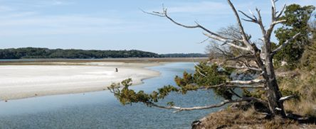 Low tide along Fort George River in Little Talbot Island State Park. Photo by E.Stanton.