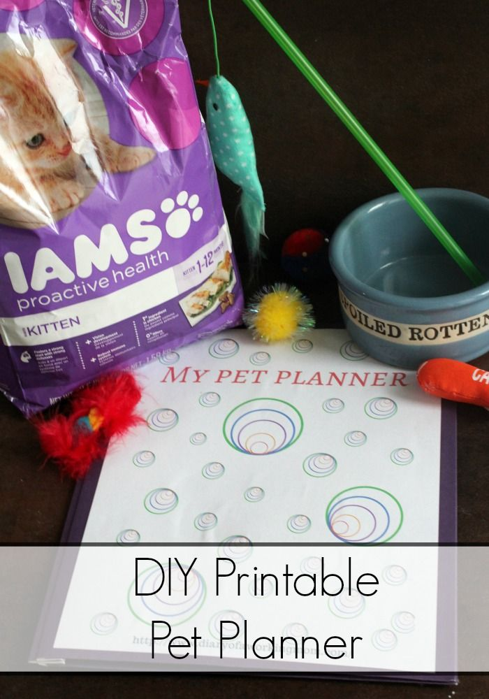 Keep your cat happy & healthy with  IAMS at @walmart and this free printable My Pet Planner! #IAMSVisibleDifference #IAMSCat AD