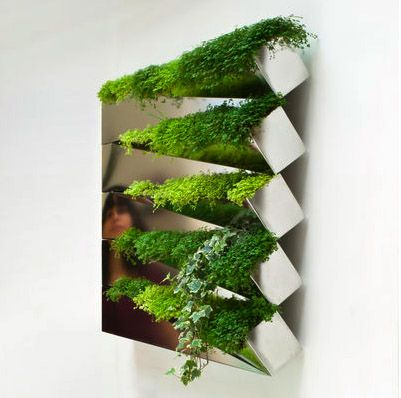 That's pretty cool too!  Miroir en Herbe indoor herb garden salad wall