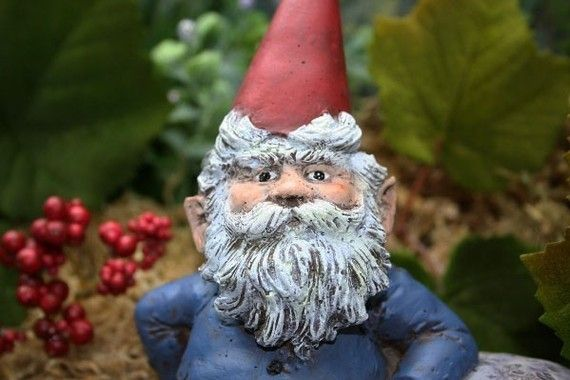 Garden Gnomes For Sale Cute Lawn Gnome is Perfect by PhenomeGNOME
