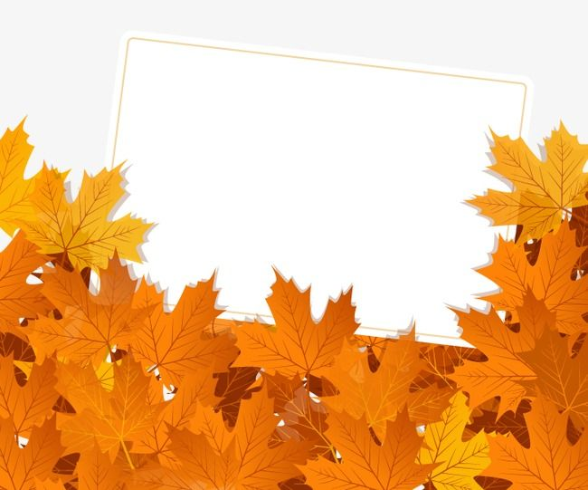 Autumn Vector Material Autumn Background Autumn Border Autumn Leaves Png Transparent Clipart Image And Psd File For Free Download Autumn Leaves Clipart Images Vector