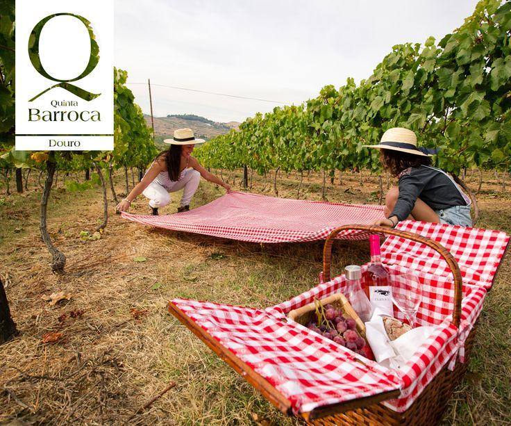 Vamos fazer um piquenique? www.quintadabarroca.com.pt #QuintadaBarroca #Douro #AgroTurismo #Gastronomia