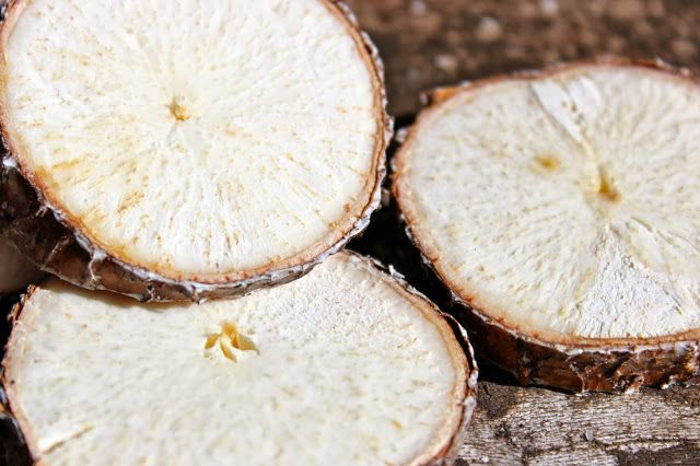 How To Make Yucca Root Shampoo | Simply Nahala