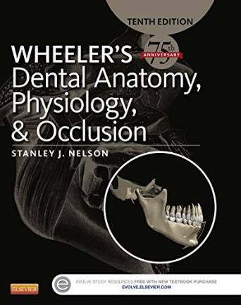 8 best medical books free download images on pinterest human drowledge textbook of dental anatomy physiology and occlusi fandeluxe Images