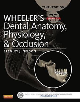 8 best medical books free download images on Pinterest | Human ...