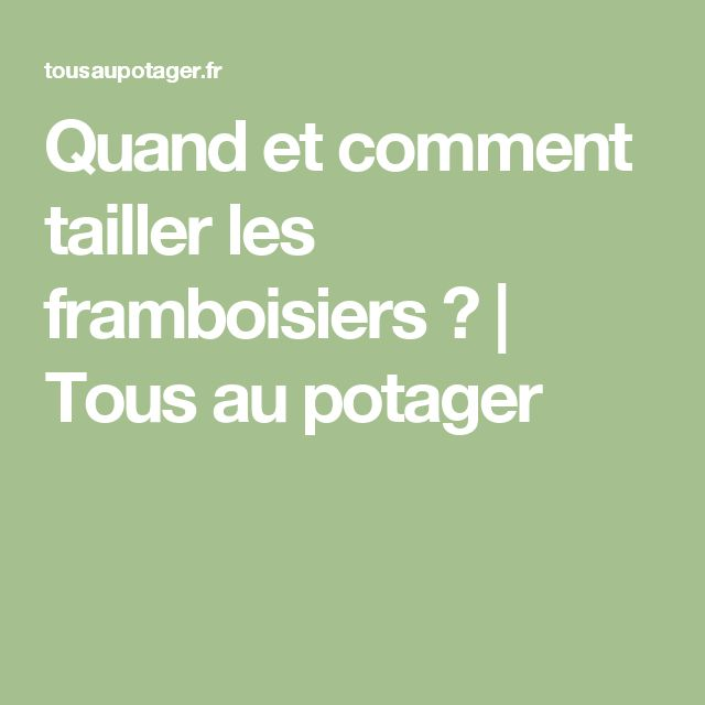 1000 ideas about taille framboisier on pinterest tailler les framboisiers comment bouturer. Black Bedroom Furniture Sets. Home Design Ideas
