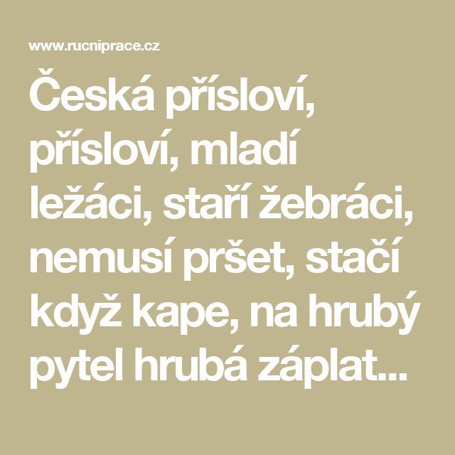Česká přísloví, přísloví, mladí ležáci, staří žebráci, nemusí pršet, stačí když kape, na hrubý pytel hrubá záplata, peníze kazí lidi, malé ryby také ryby  - RucniPrace.cz