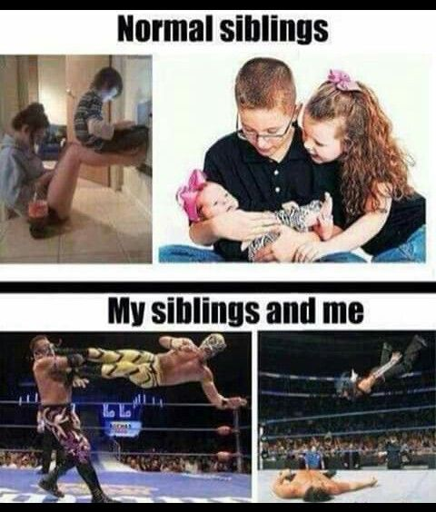 Funny Quotes About Siblings: Best 25+ Sister Humor Ideas On Pinterest