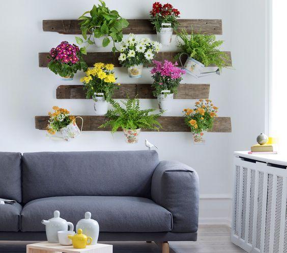 Oltre 25 fantastiche idee su fioriere parete su pinterest - Piante da parete ...