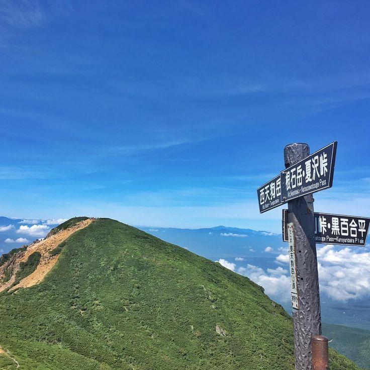 . . 2017.08.27八ヶ岳・天狗岳🗻 500フォロワーさん達成の記念pic📷は晴天八ヶ岳ブルー . . いつも見ていただいてありがとうございます😃 次は100投稿達成です(^◇^;) . . これからもこんなペースにお付き合いくださいませ✨ . . #八ヶ岳#東天狗岳#西天狗岳#instamountain#instamountains#trekking#mountain#mountains#climbingmountains#instalike#instagoods#lovemountains#山登り#山登り好きな人と繋がりたい#登山#登山好きな人と繋がりたい#八ヶ岳ブルー#黒百合ヒュッテ#黒百合平#500フォロワー#2011年から#6年かかりました