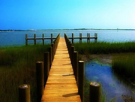 Homes For Sale In Assateague Island Maryland