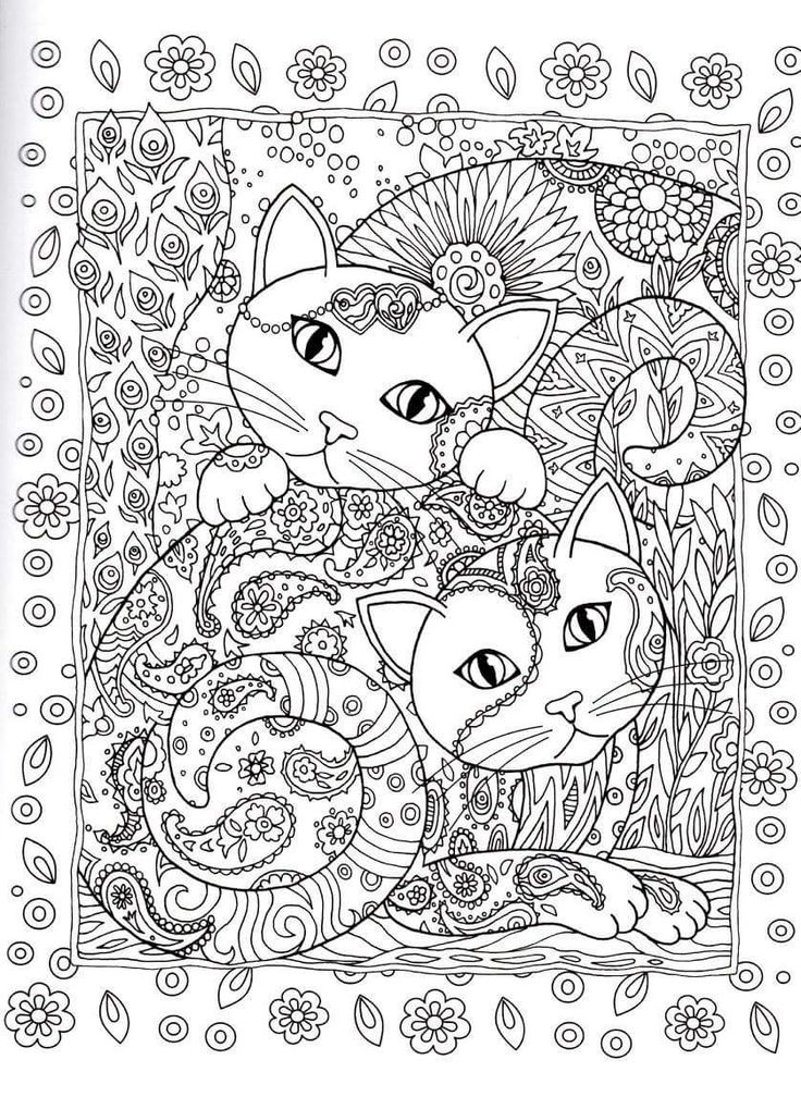 Cats  Coloring pages   adult detailed advanced printable Kleuren