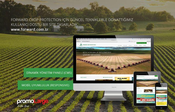 Forward Türkiye kurumsal mobil uyumlu yönetim panelli web site tasarımı