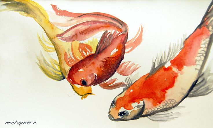 japanese koi. watercolor. the weather is... |