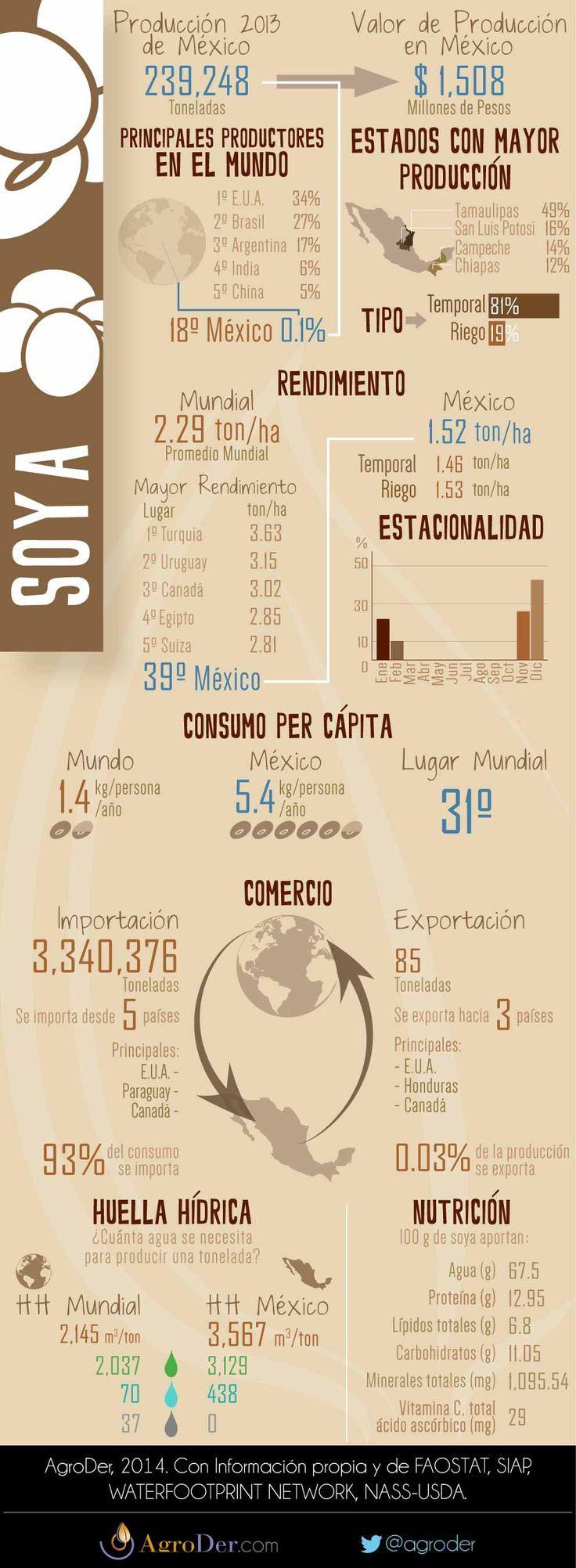 Infografía - Soya en México, 2013.