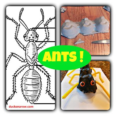 Ant Craft