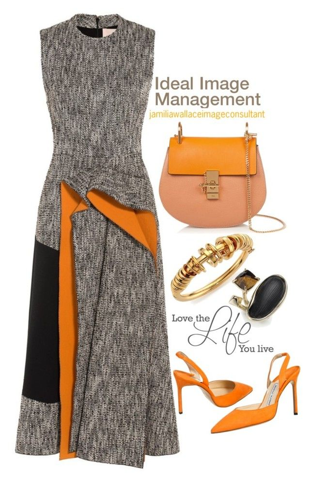 Ideal Image by jamilia-wallace on Polyvore featuring polyvore fashion style Roksanda Manolo Blahnik Chloé Alexis Bittar
