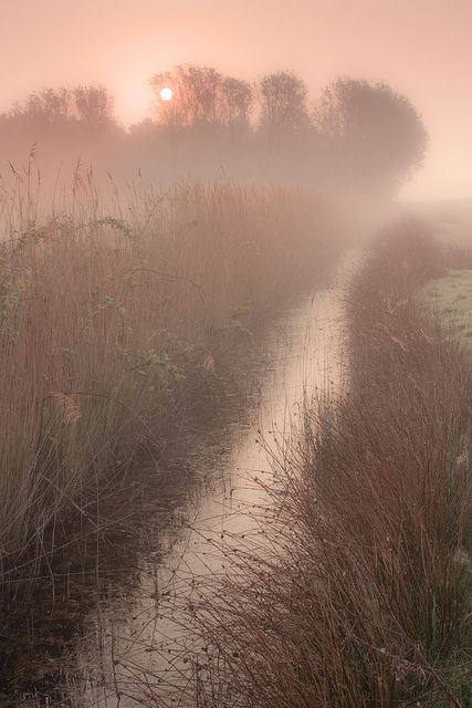 Norfolk Sunrise | Flickr - Photo Sharing!