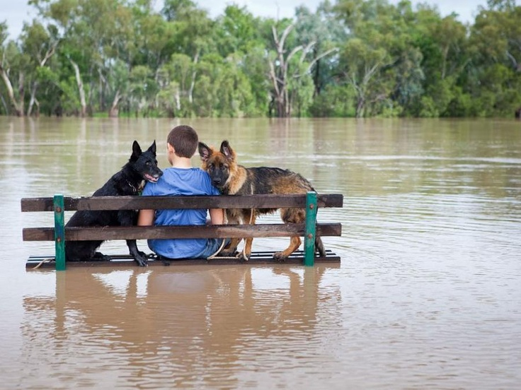 Southern Queensland town of St. George, Australia on February, 2012. (ABC)