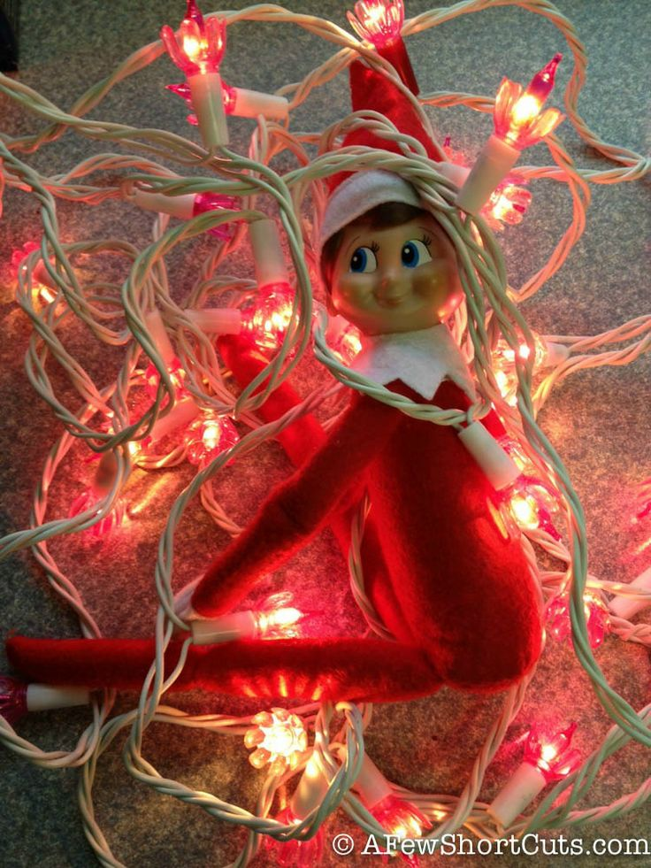 Elf On The Shelf Ideas Tangled In Lights