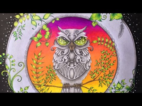 Hi Guys In This Video I Will Be Coloring The Second Owl From Enchanted Forest Book By Using Prismacolor Premier Colored Woodcase Pencils