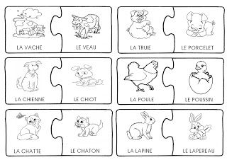 La maternelle de Laurène: Animaux: femelles et bébés