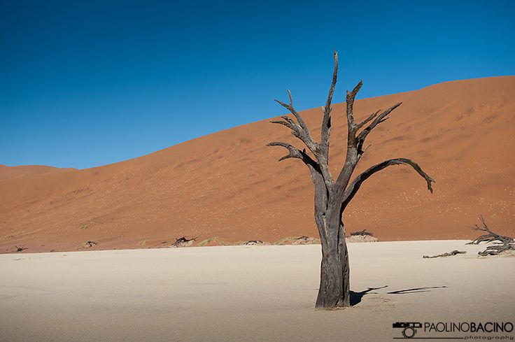 Namibia, Photo by Paolino Bacino