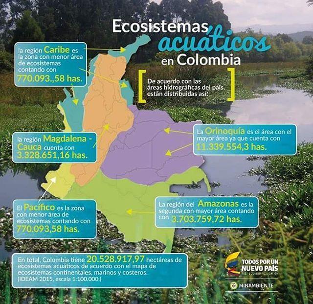 Ecosistemas Acuáticos De nuestra amada COLOMBIA .. #ecologia #ecology #ecosistema #acuatic #Colombia #lovenature #nature #infographic #lovecolombia #water #biodivercidad #biodiversity #landscape #loveland #likeforlike  #followforfollow