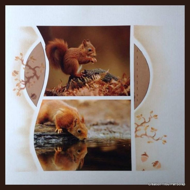 scrapbook page ... clean and simple presentation ... photos of squirrels ...