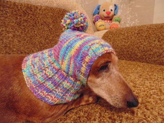 Dinosaur Dog Clothes Pom Pom Hat Dinosaur Hat For Dachshund Etsy Warm Winter Hats Dinosaur Hat Dachshund