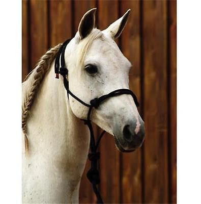 Cashel Nylon Horse Halter w/ 8' Lead - Black Traditional rope horse halter