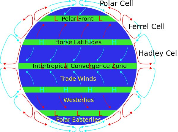 Horse latitudes or subtropical highs are subtropical latitudes between 30 and 38 degrees both north and south where Earth's atmosphere is dominated by the subtropical high, an area of high pressure, which suppresses precipitation and cloud formation, and has variable winds mixed with calm.