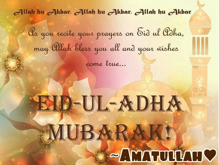 EID - UL - ADHA  MUBARAK!!  To all my followers and fellow pinners . May Allah grant all your wishes . In sha Allah summa ameen