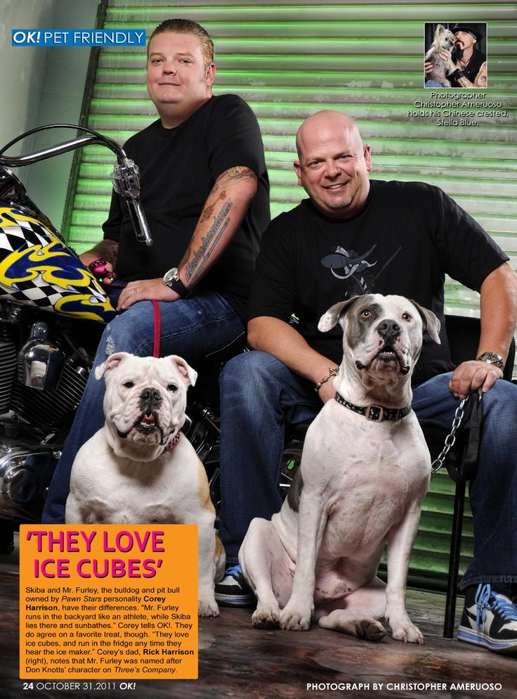 Pawn Stars Rick & Corey Harrison with their two pups. Featured in Ok! magazines OK! Pets by Christopher Ameruoso