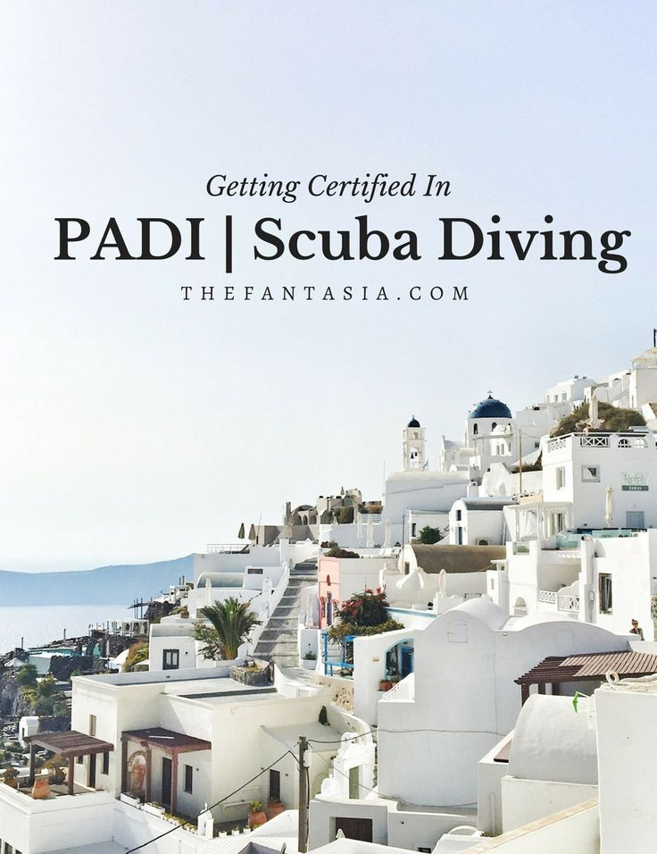 I crossed off a major bucket list item this year - getting my PADI certification! PADI is the international standard for scuba diving, so I am stoked to explore more of this planet!