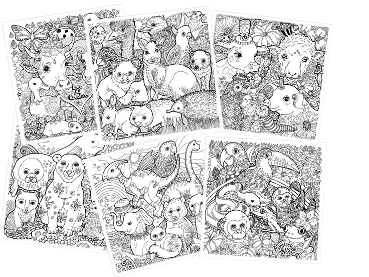Animal rights colouring book by Lynda Bell! Pre-order: https://www.pledgeme.co.nz/projects/5345-help-lynda-publish-some-colouring-books-and-get-one-for-yourself