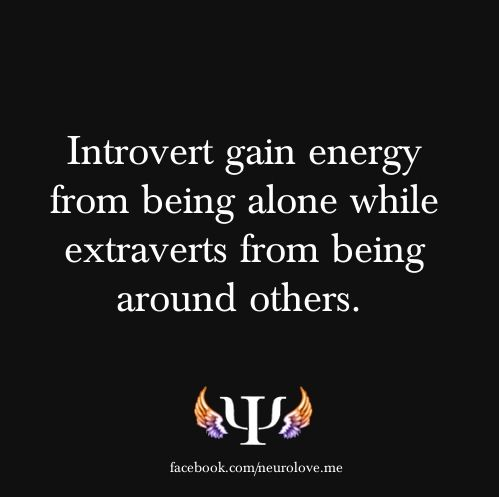 Introverts v. Extroverts