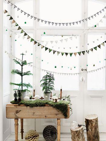 部屋の中のグリーンをコーナーにあつめて、大きさの違うツリーに見立てて並べてみたら、ナチュラルなクリスマスの始まりです。 真っ白な雪の中の木々をイメージして、ガーランドやろうそく、電球を並べるだけ!