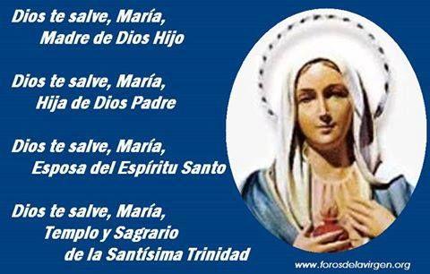 #REFLEXIONES  Dios te salve, María, Madre de Dios Hijo. Dios te salve, María, Hija de Dios Padre. Dios te salve, María, Esposa del Espíritu Santo. Dios te salve, María, Templo y Sagrario de la Santísima Trinidad.