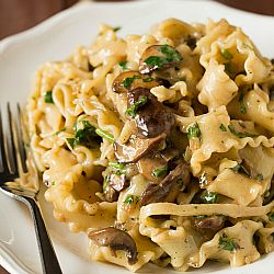 Creamy Mushroom-Fontina Pasta - Absolutely delicious. We used bowtie pasta and plain old mushrooms and the result was delicious.