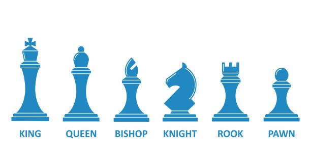 Chess Piece Name Set Board Game Image King Queen Rook Bishop Chess Pieces Chess Stock Illustration