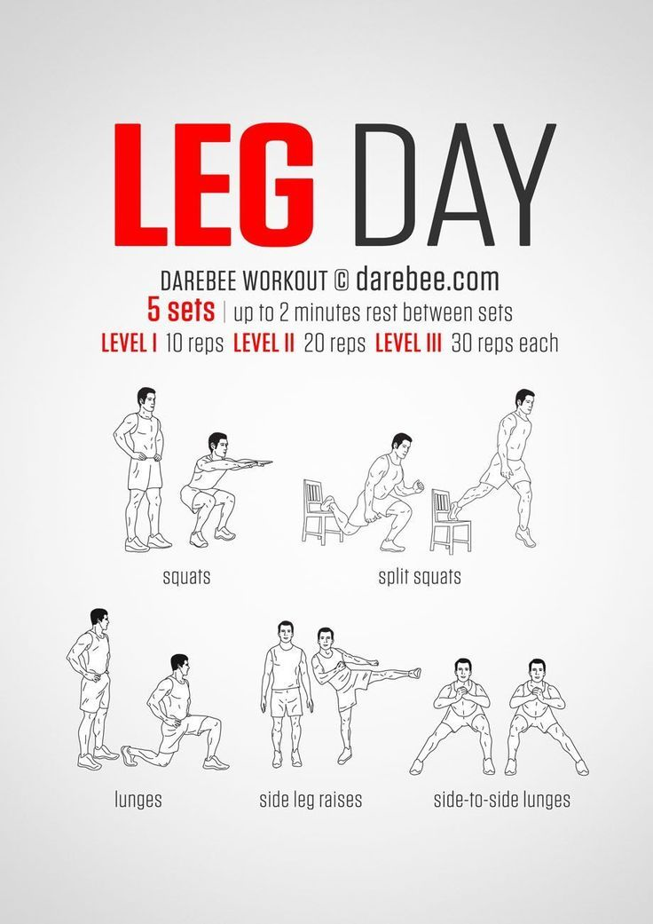 No-equipment legs workout for all fitness levels. Visual guide: print & use. | Ectomorph Work…