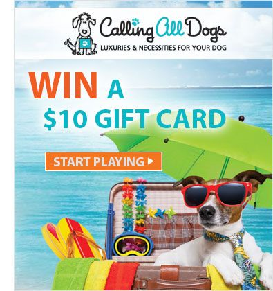 Start playing our Calling All Dogs tournament and you could WIN a $10 gift card! www.play2shop.com/tournaments #FreeGames #FreeOnlineGames #GameTournaments #FreeStuff #WinFreeStuff #GiftCard