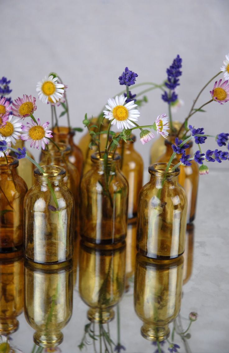Bottles tiny tincture brown set of 12 8 could use for Save on crafts wedding