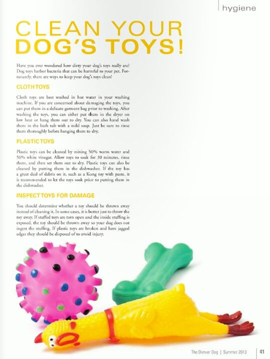 Clean Your Dog's Toys - For when Bailey gets old and doesn't rip up her toys within the first hour she has them!