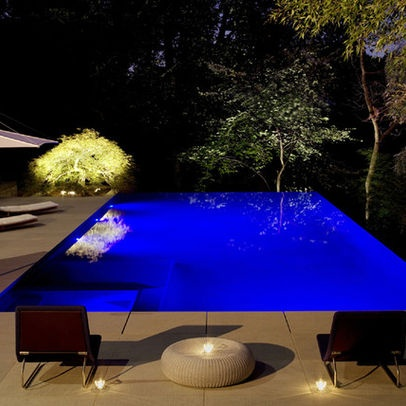 101 best images about i want a pool on pinterest small for Pool design 101