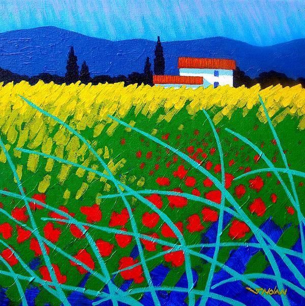 Poppy Field France by John Nolan